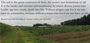 Wendell berry quote-1